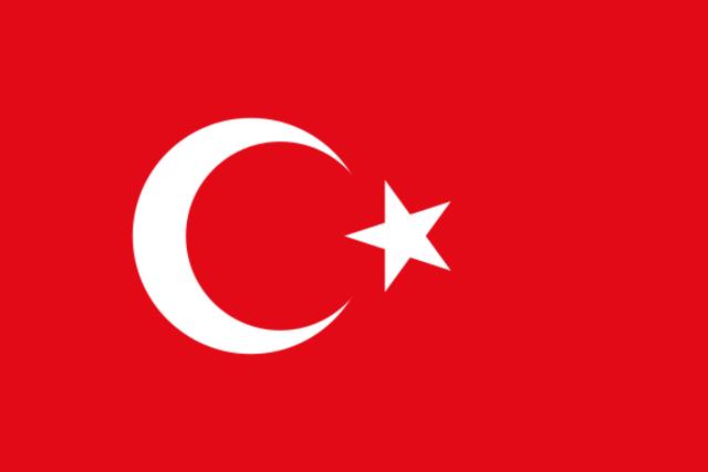 Turquía entra a la Guerra.