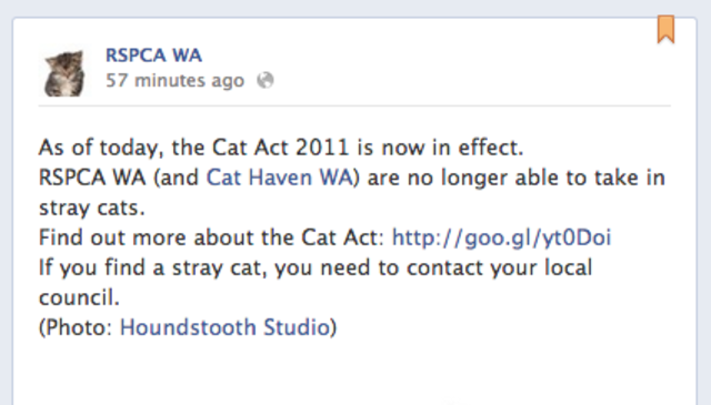 RSPCA & Cat Haven closed to strays