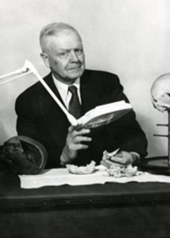 Bases de la osteopatía craneosacral
