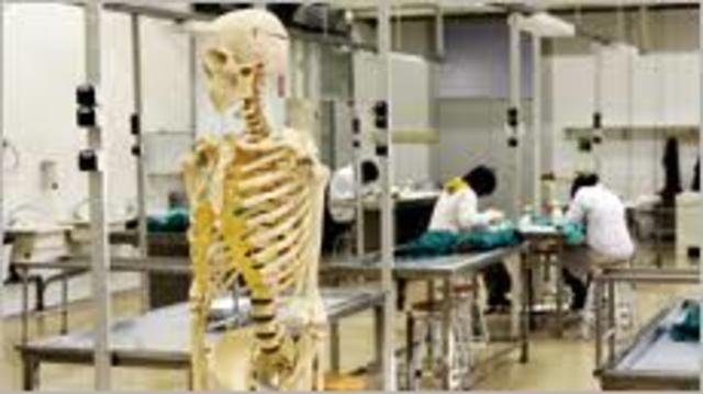 Escuela de Osteopatía en la Universidad Autónoma de Barcelona