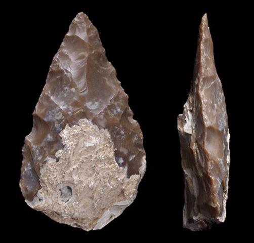 Hand axe (Tool/Weapon)