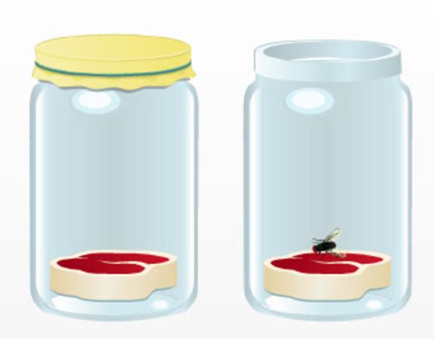 Meat in a Jar