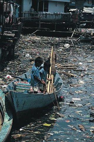 Contaminación del mar
