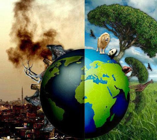 Conferencia Intergubernamental sobre Educación Ambiental - Tbilisi