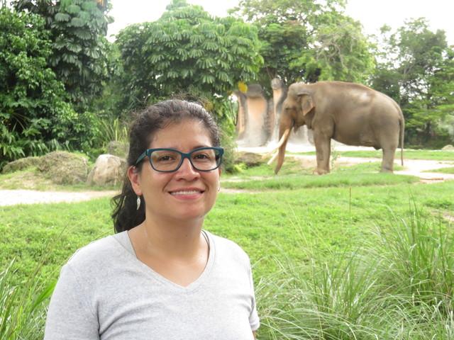 Visitando The Miami Zoo