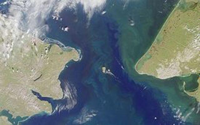 Mikhail Stadukhin, another explorer, discovered the Bering Strait.