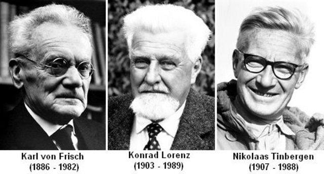 El Premio Nobel de Medicina y Fisiología