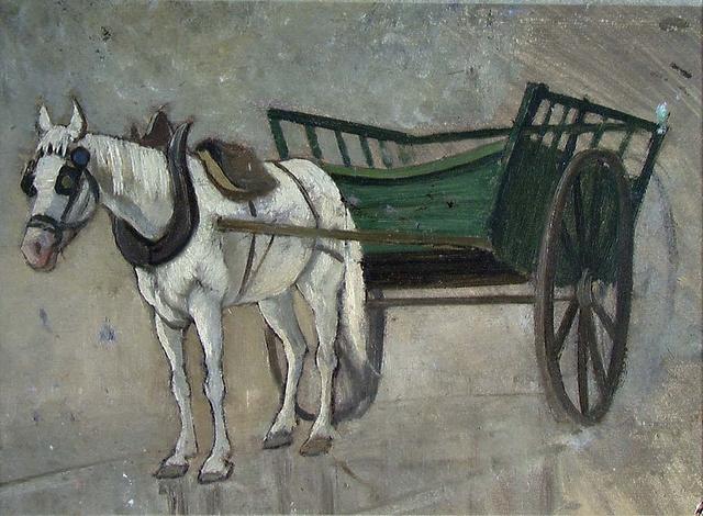 Hvide heste