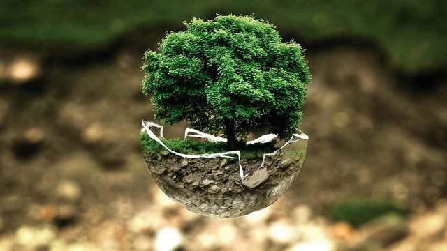 Birth of organic life