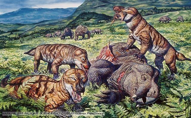 Modern mammals appeared