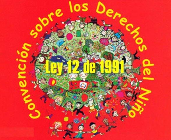 Ley 12 de 1991