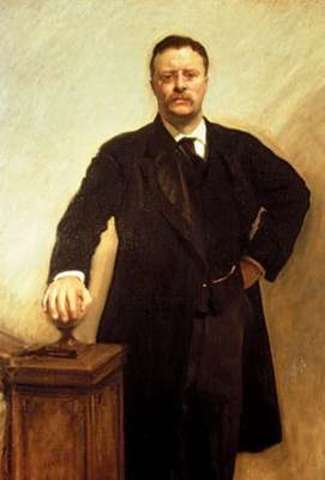 Theodore Roosevelt Elected President