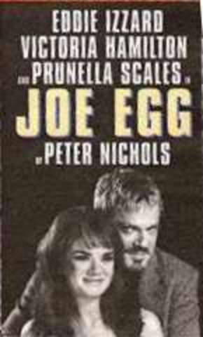 A Day in the Death of Joe Egg By Peter Nichols