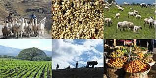 Aparició dels primers poblats, dedicats a l'agricultura i la ramaderia.