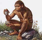Aparició de l'homo habilis