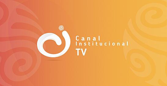 Aparición del canal institucional