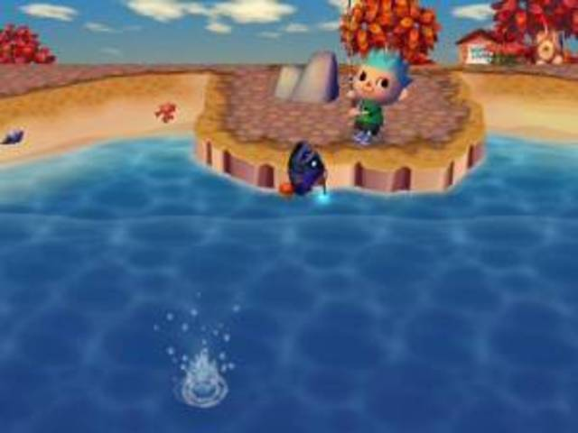 Animal Crossing for the Wii (+)