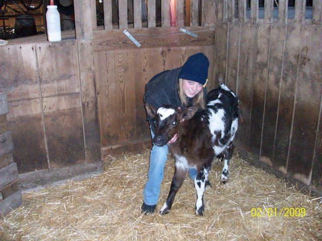 Hace dos años que empecé a cuidar las vacas.