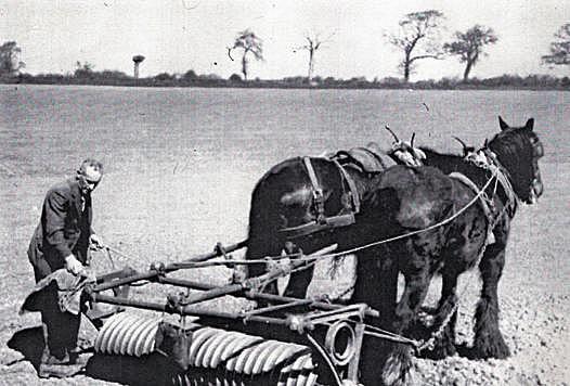 1920's Economy: Farm Problems
