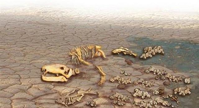 Se extingue la mayoría de la vida marina,