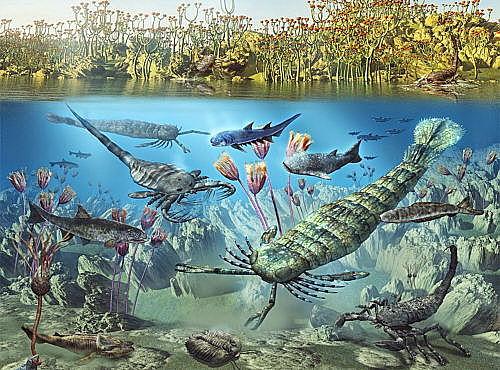 Era Paleozoica 541M de Años a,c