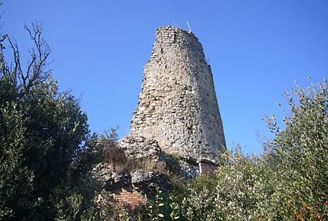 Galí de Sant Martí