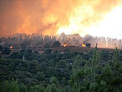 לאומי: השריפה בכרמל