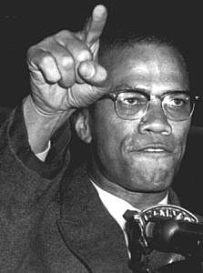 Malcom X's Assassination