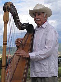 Andrés Alfonso Vergara