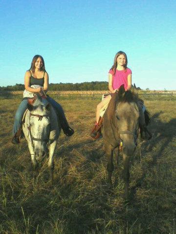 Hace dos años que recibí mi caballo Missy.