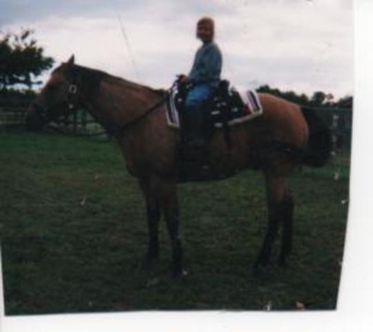 Hace nueve años que recibì mi primero caballo.