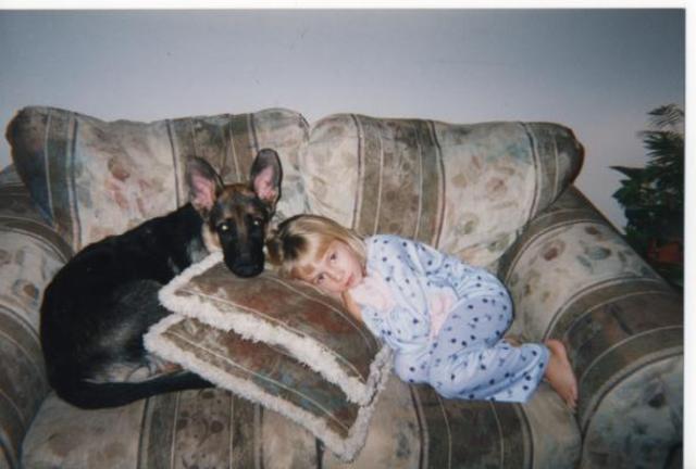 Hace doce años que recibì mi primero perro.