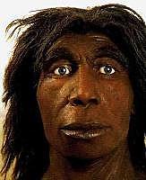 Homo Neanderthalensis (GRUP HOMO)