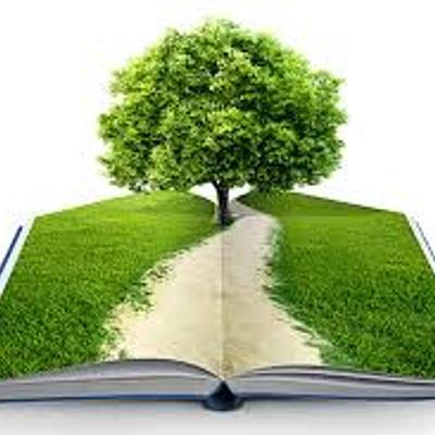 Educación Ambiental timeline
