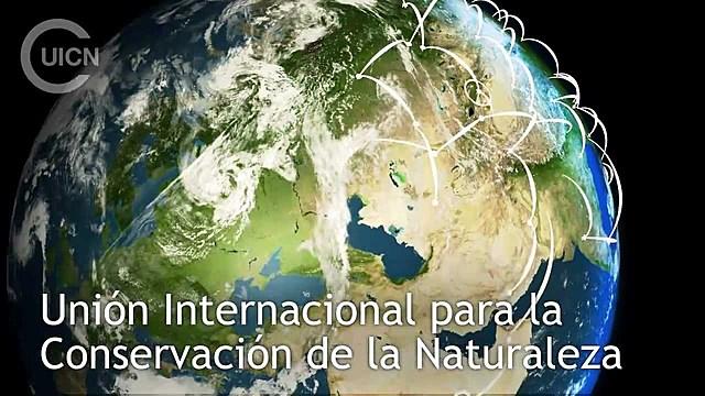 Reunión Internacional para la Protección de la Naturaleza