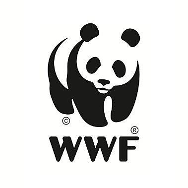 Creación del WWF