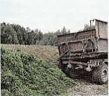 Овощемолочный совхоз