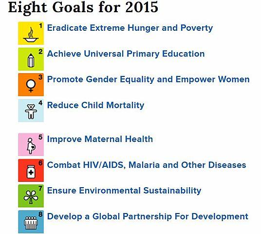 India was a signatory to the Millennium Development Goals