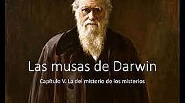 LAS MUSAS DE DARWIN II PARTE timeline