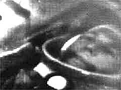 Vostok 1 (USSR)