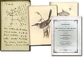 Primer libro de notas de Darwin