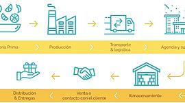 A1.- Concepto de cadena de suministro timeline