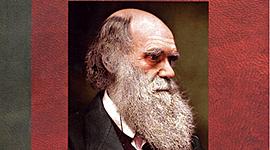 Las musas de Darwin(segundo parcial) timeline