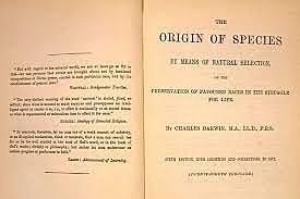 el verano de 1858