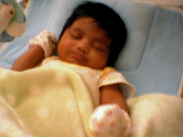 BORN IN INDIANAPOLIS
