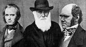 ideas de Darwin