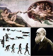 Darwin escribió Alfred me la paso de vista por la casi ilegible caligrafía .