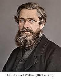 De 1848 a 1852