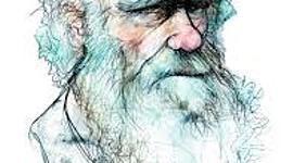 Musas de Darwin timeline