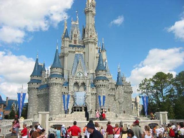 Went To Disney World